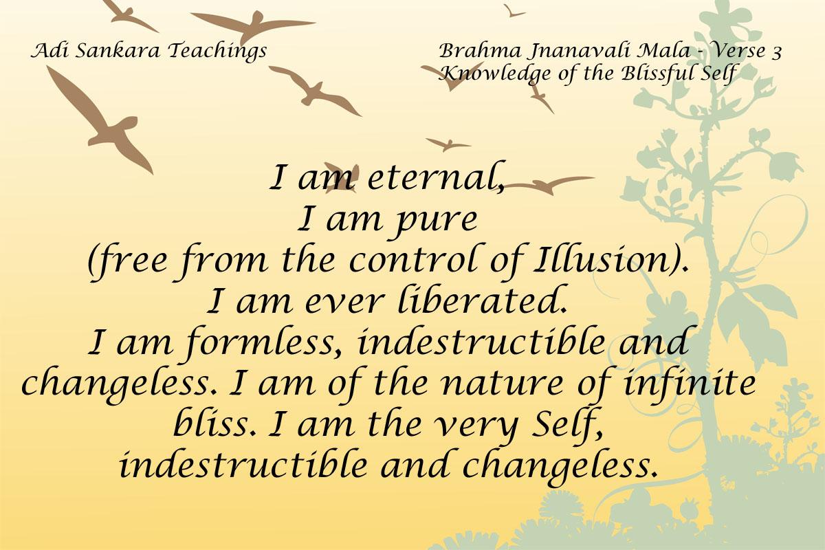 Brahma Jnanavali Quote 3